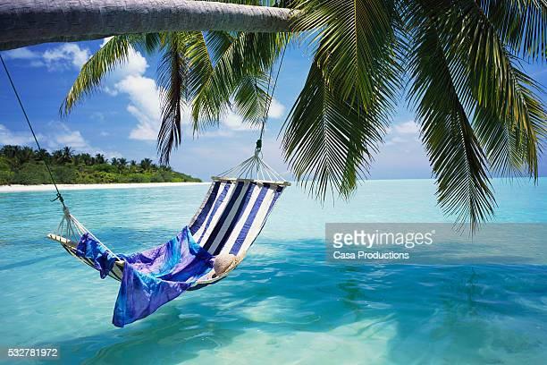 hammock over tropical ocean - idílico - fotografias e filmes do acervo