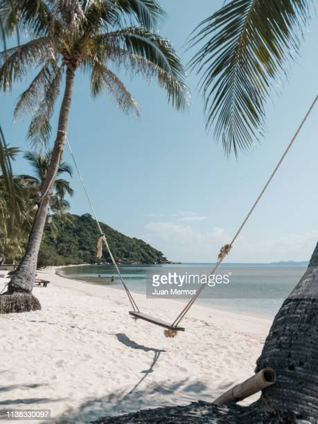 hammock - dry stock pictures, royalty-free photos & images