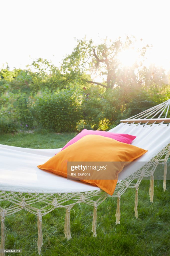 Hammock with pillows in garden at sunset : Stock-Foto