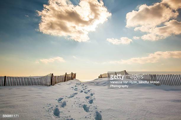 hammonasset beach in winter - vanessa van ryzin stockfoto's en -beelden