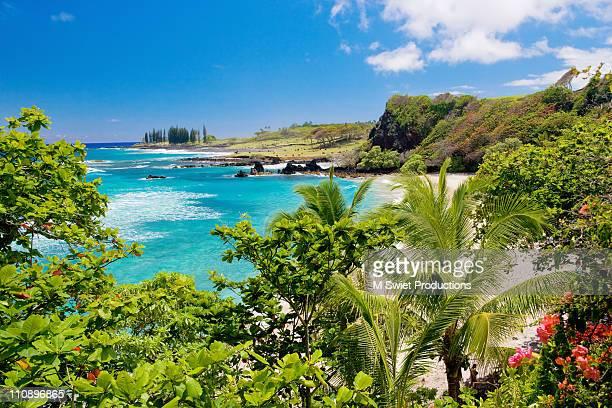 Hamoa beach, Hana, Hawaii
