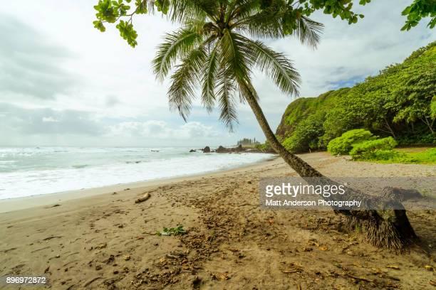 Hamoa Beach #1