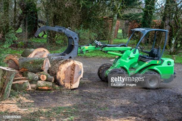 Hampshire, England, UK, Moving sections of an Ash tree with a small tractor and grab.