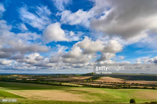 hampshire landscape - the webster stock pictures, royalty-free photos & images
