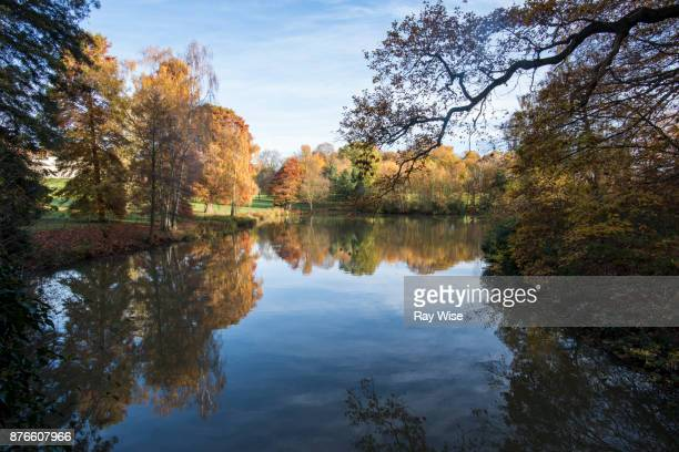 hampstead heath london, in autumn - hampstead heath stock pictures, royalty-free photos & images