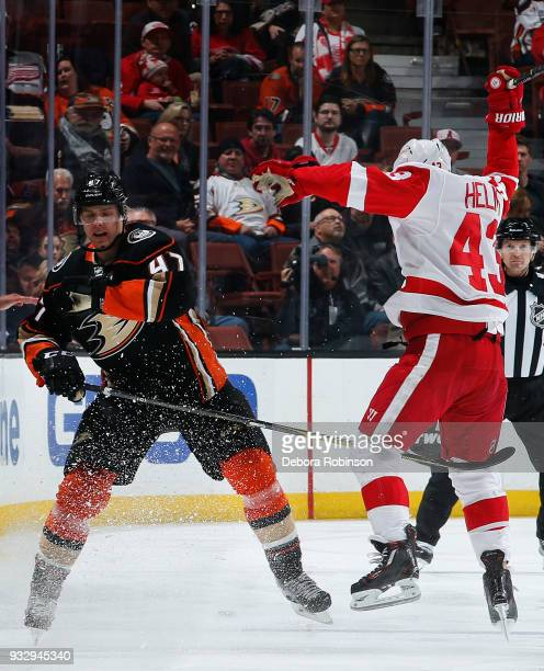 Hampus Lindholm of the Anaheim Ducks battles against Darren Helm of the Detroit Red Wings during the game on March 16 2018 at Honda Center in Anaheim...