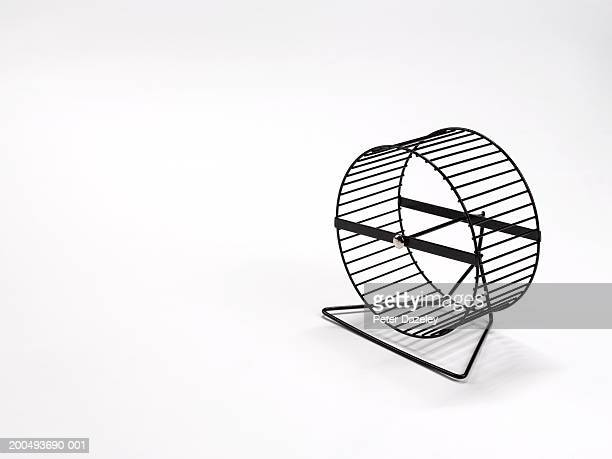 Hamster wheel against white background, close-up