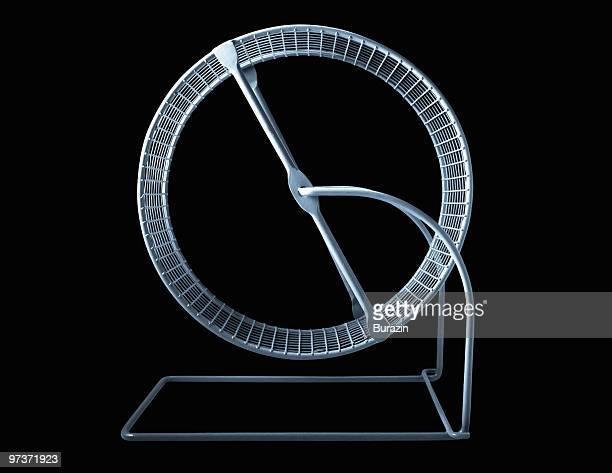 hamster wheel - wheel stock pictures, royalty-free photos & images