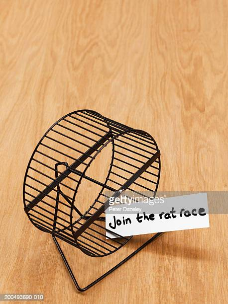 Hamster wheel with 'join the rat race' sign, on wooden floor