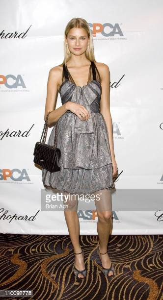 Hana Soukupova during The Tenth Annual ASPCA Bergh Ball Tails of Time at Mandarin Oriental in New York City New York United States