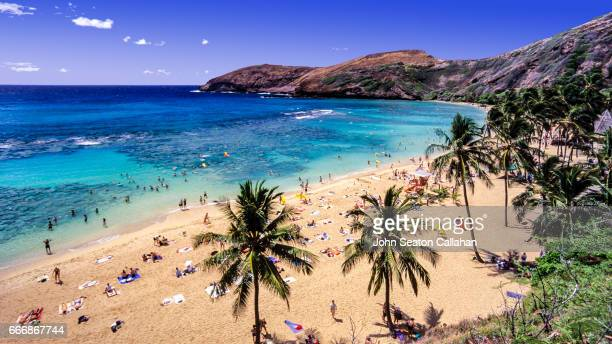 hanauma bay nature preserve - oahu stock pictures, royalty-free photos & images