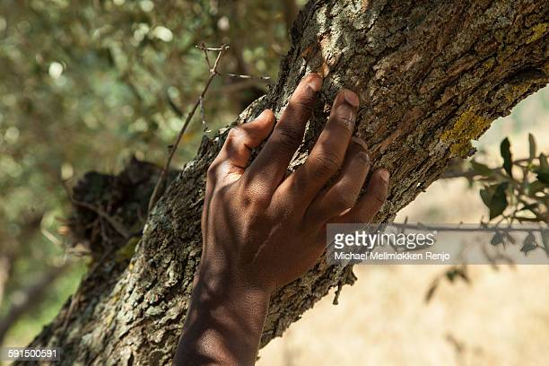 Hand against e trunk