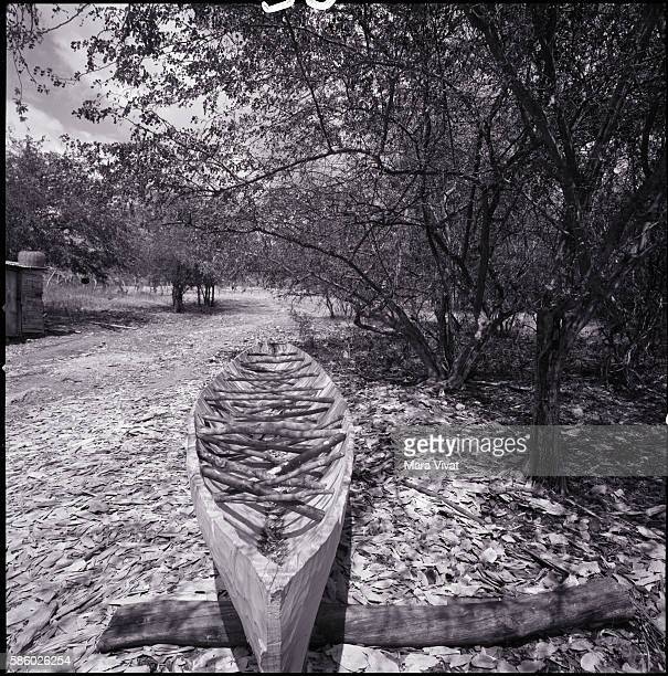 A hand carved dugout canoe rests in a clearing surrounded by trees on Jamaica