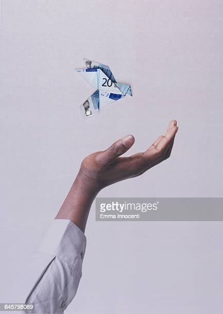 hand catching a money bird - twenty euro banknote stock photos and pictures