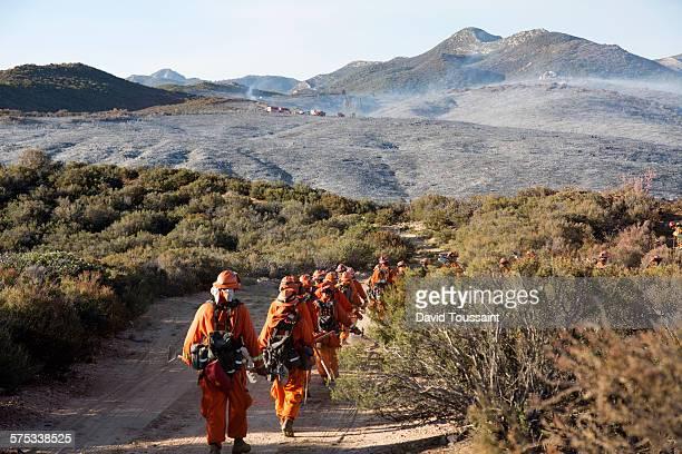 hand crew on a brush fire - prisonnier photos et images de collection