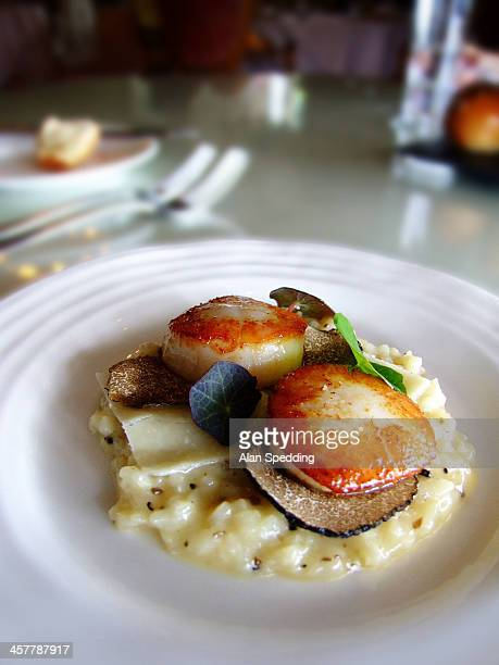 hand dived scallops with white chocolate - nasturtium stock pictures, royalty-free photos & images