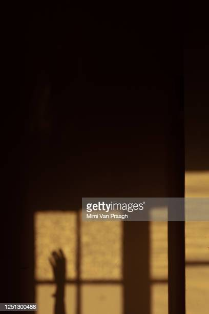 hand drowning in the shadows - murder victim stock pictures, royalty-free photos & images