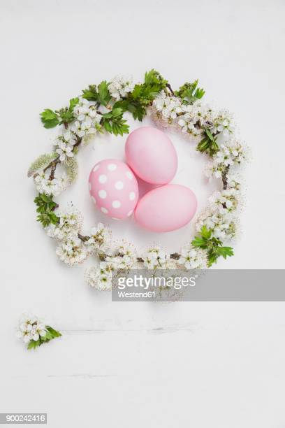 Hand dyed pink Easter eggs in cherry blossom nest on wooden background