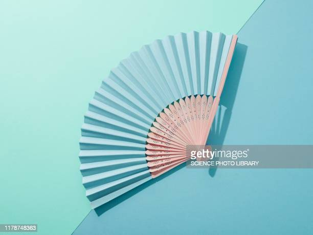 hand fan - hand fan stock pictures, royalty-free photos & images