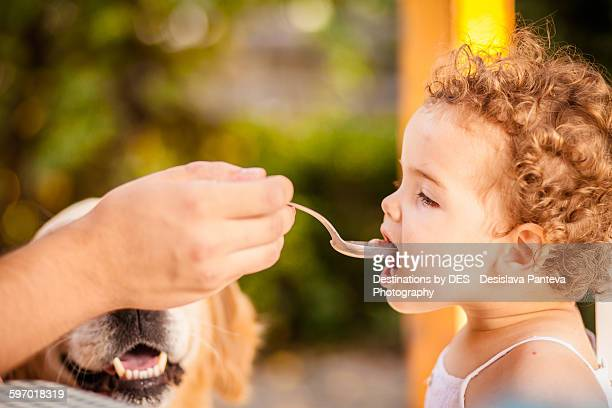 hand feeding baby - dog eats out girl stock pictures, royalty-free photos & images