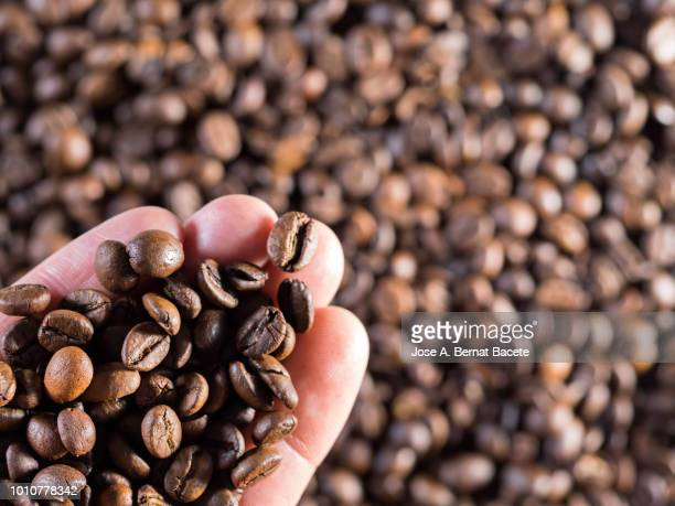 i hand from a man with a handful of coffee beans toasted on a background of coffee beans. full frame of the textures formed by roasted coffee beans. - grainy stock pictures, royalty-free photos & images