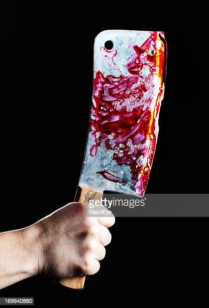Hand grips gruesome blood-covered meat cleaver: butcher or murderer?