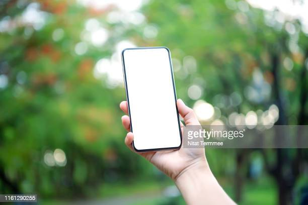 hand hold smartphone on green blurred background. blank screen mobile phone for graphic display montage. - halten stock-fotos und bilder