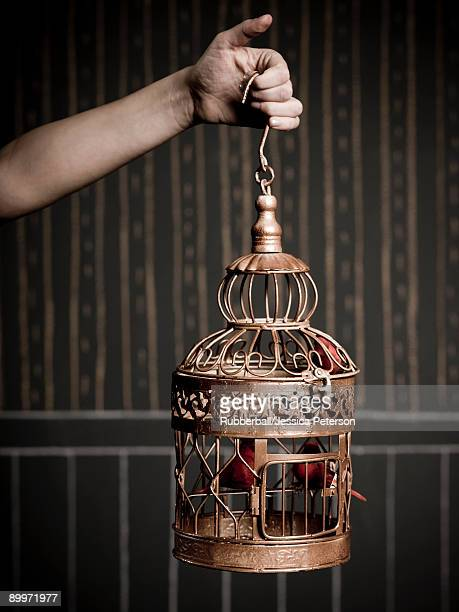 hand holding a birdcage