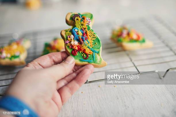 hand holding a dinosaur cookie - home made stock pictures, royalty-free photos & images