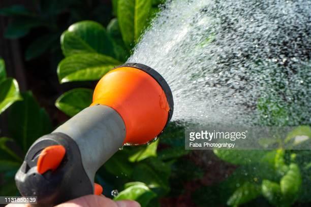 Hand Holding a Garden Hose Spraying Water