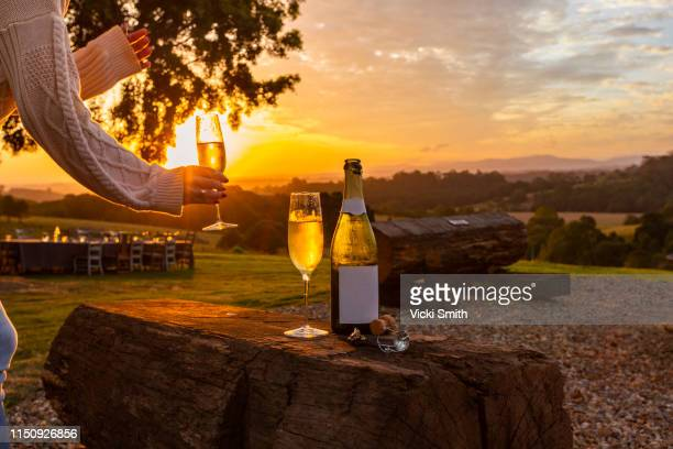 hand holding a glass of wine at sunset - new south wales stock pictures, royalty-free photos & images