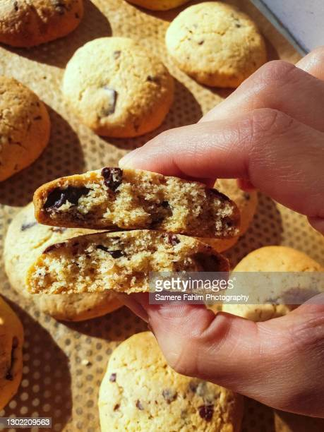a hand holding a homemade cookies with chocolate chips - hainaut stock pictures, royalty-free photos & images