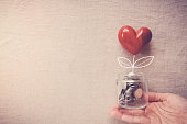 Hand holding a jar of heart tree growing on money coins, social responsibility and donation concept