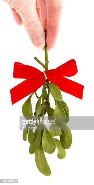 hand holding a sprig of fresh mistletoe - mistletoe stock photos and pictures