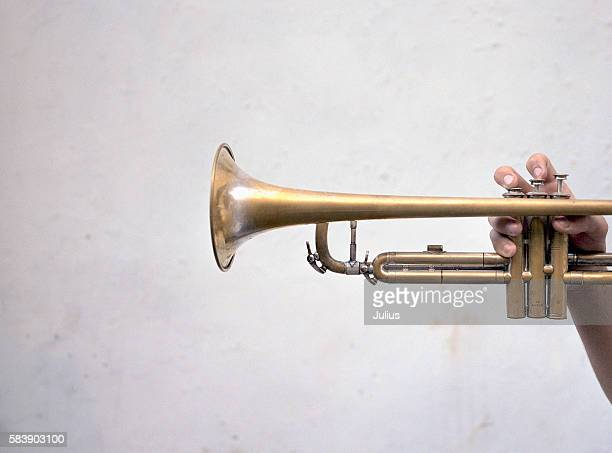 Hand Holding a Trumpet