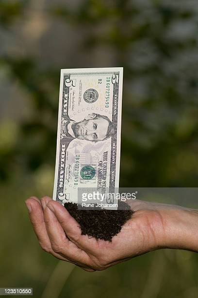 Hand holding American 5 dollar bill in soil