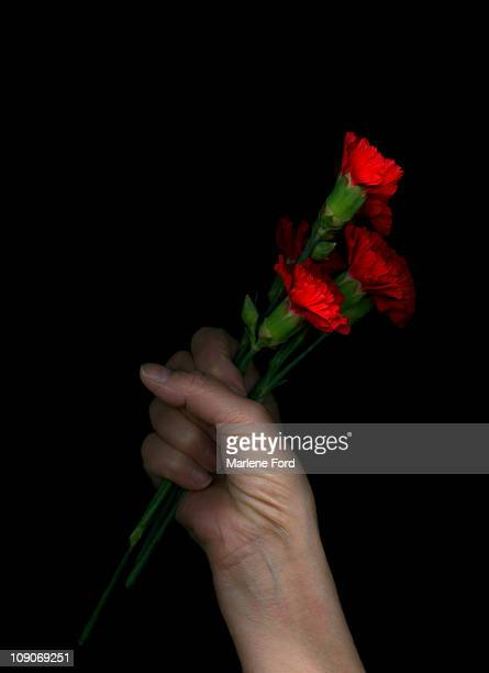 A hand holding  bunch of  red carnations