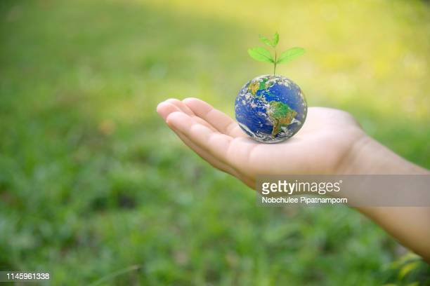 hand holding earth on green grass on sunlight, love and save the world for the next generation concept.  earth day. energy saving concept, elements of this image furnished by nasa - world kindness day fotografías e imágenes de stock