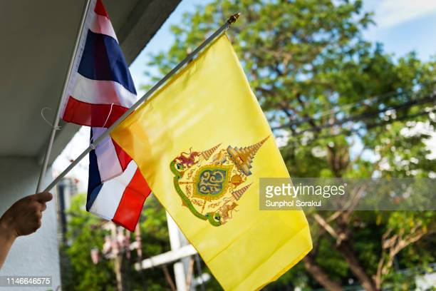 a hand holding flags during the celebration of king rama x coronation - king of thailand stock pictures, royalty-free photos & images