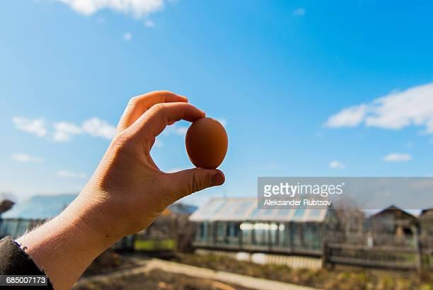 Hand holding fresh egg on farm