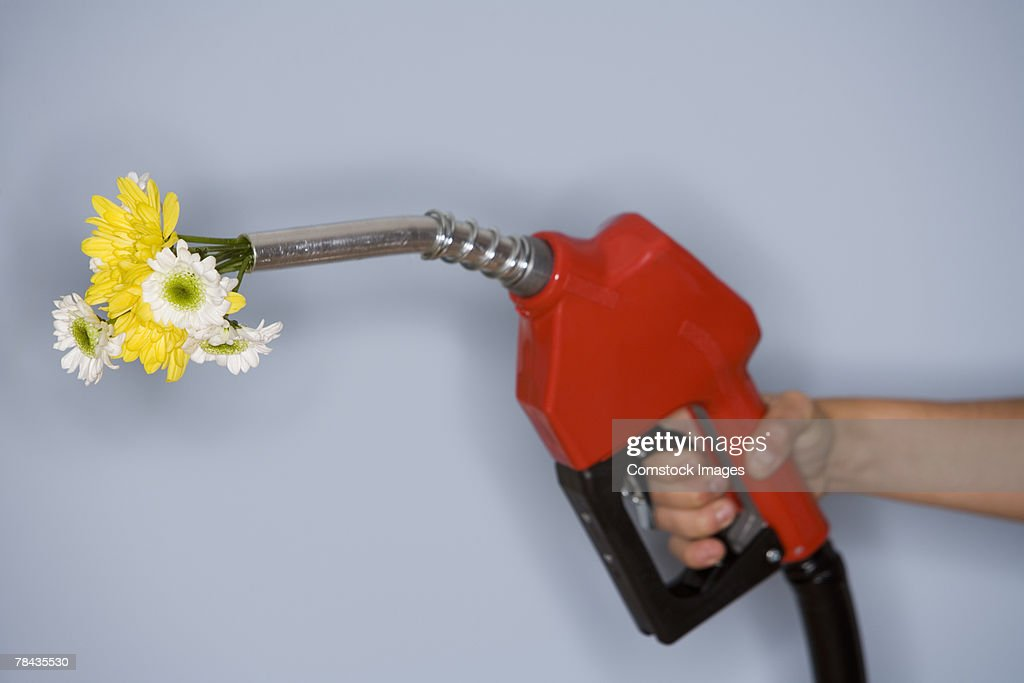 Hand holding gas pump filled with flowers : Stockfoto