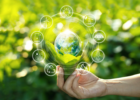 Hand holding light bulb against nature on green leaf with icons energy sources for renewable, sustainable development. Ecology concept. Elements of this image furnished by NASA. 1022892932
