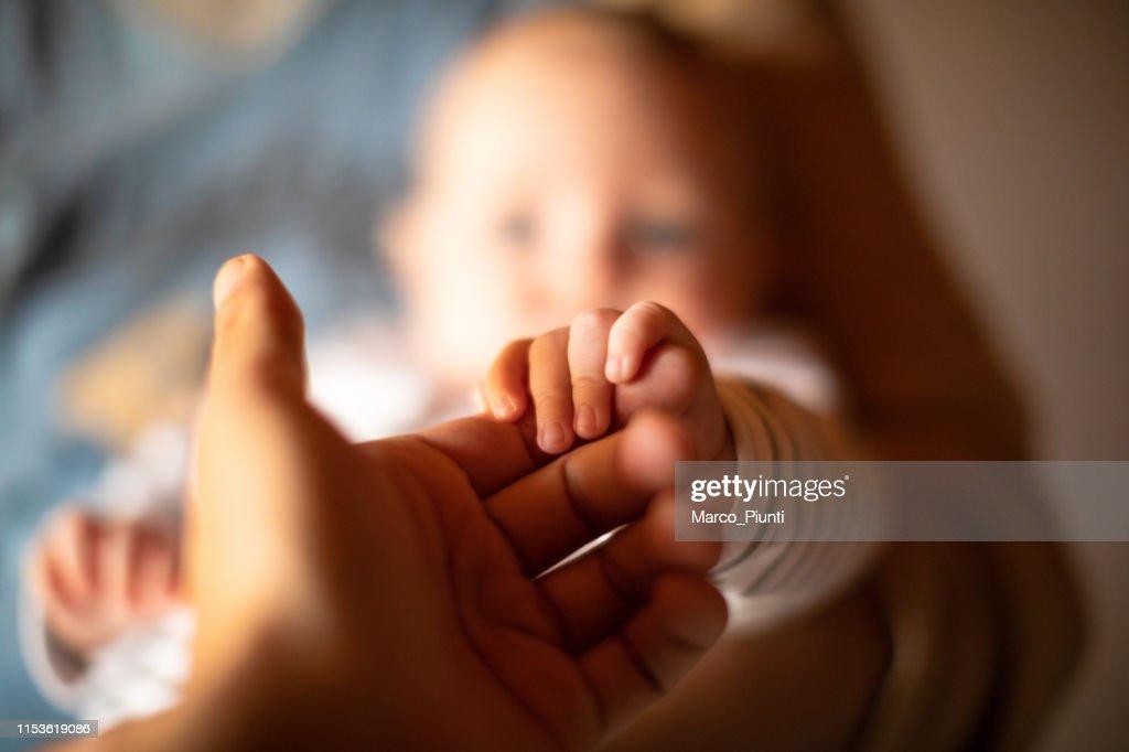 Hand holding newborn baby's hand : Stock Photo