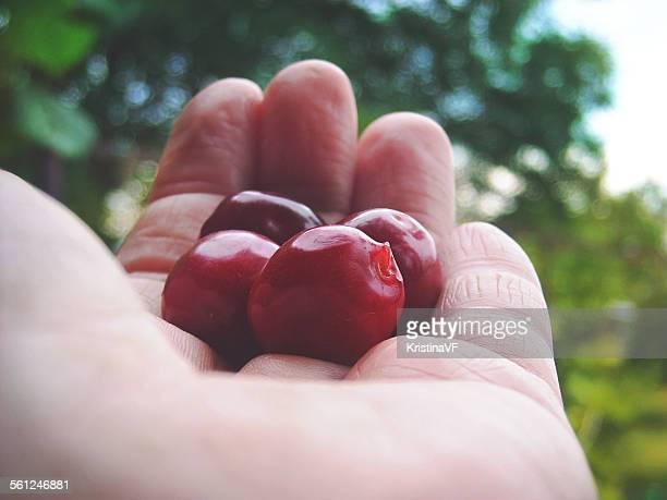 Hand, holding the cherries