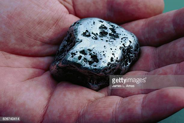 A hand holds an 80% pure platinum nugget weighing 546 grams which was taken from the Ural Mountains in Russia The Hereaus family has owned the...