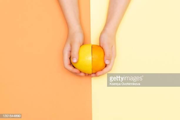 hand holds lemon slice. - juteux photos et images de collection