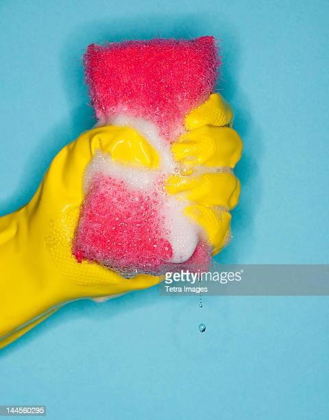 hand in glove squeezing sponge - ゴム手袋 ストックフォトと画像