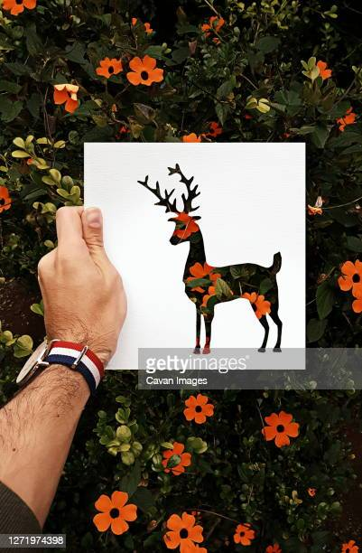 hand made silhouettes painted with real backgrounds - arte stock-fotos und bilder