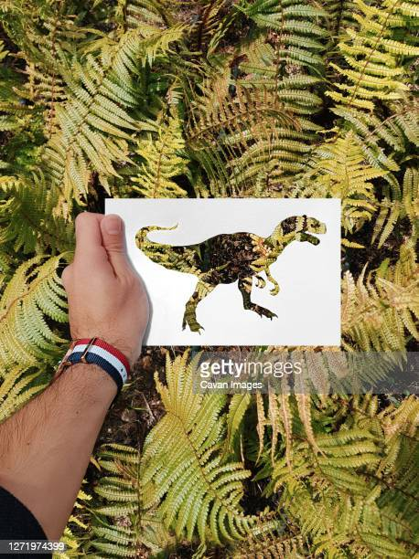 hand made silhouettes painted with real backgrounds - arte stock pictures, royalty-free photos & images
