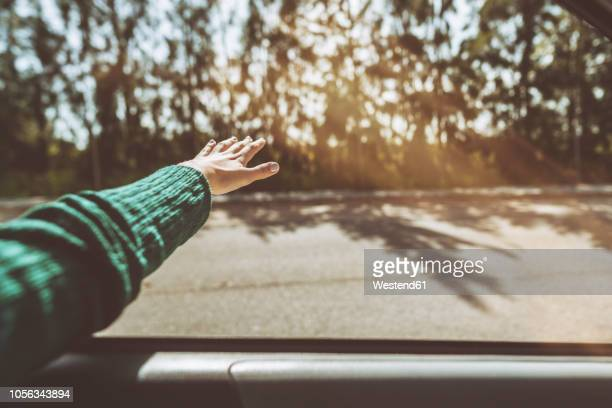 hand of a woman leaning out of car window - jerez de la frontera stock pictures, royalty-free photos & images